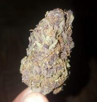Blueberry Blast Marijuana Sydney