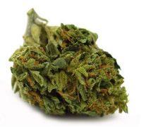 Bubba Kush Weed Bairnsdale