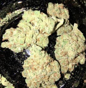 Buddha Cheese Marijuana