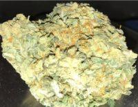 Buy Moon Cookies Weed Gladstone