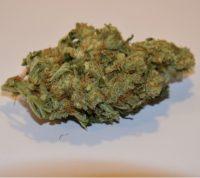 Buy Skywalker OG Marijuana Brisbane