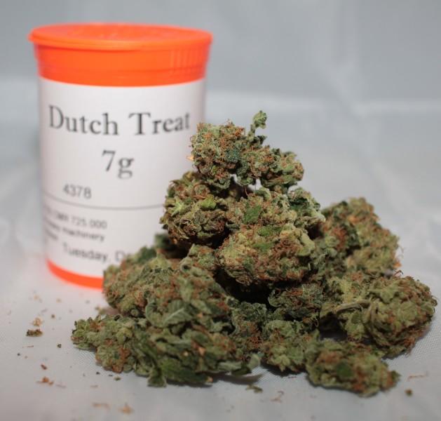 Dutch Treat Weed Colac