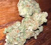 Gorilla Glue #4 Marijuana Geelong