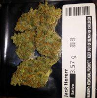Jack Herer Weed AU