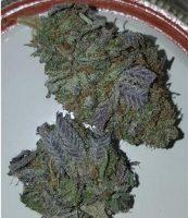 Khalifa Kush Marijuana Griffith