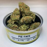 Pie Face Strain Queensland