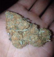 Underdog OG Marijuana Buderim