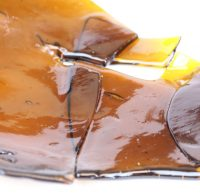 Buy Orange Diesel Shatter Geelong