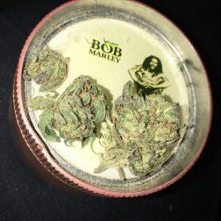 Cheese Weed Flower AU