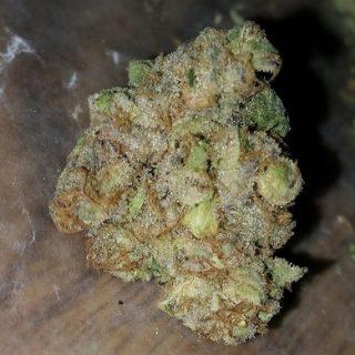 Deadhead OG Marijuana Echuca