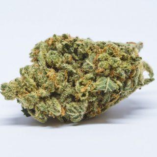 Mr Nice Weed Broome