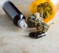Buy High THC Cannabis Oil Victoria