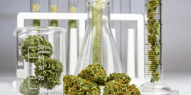 weed lab tested