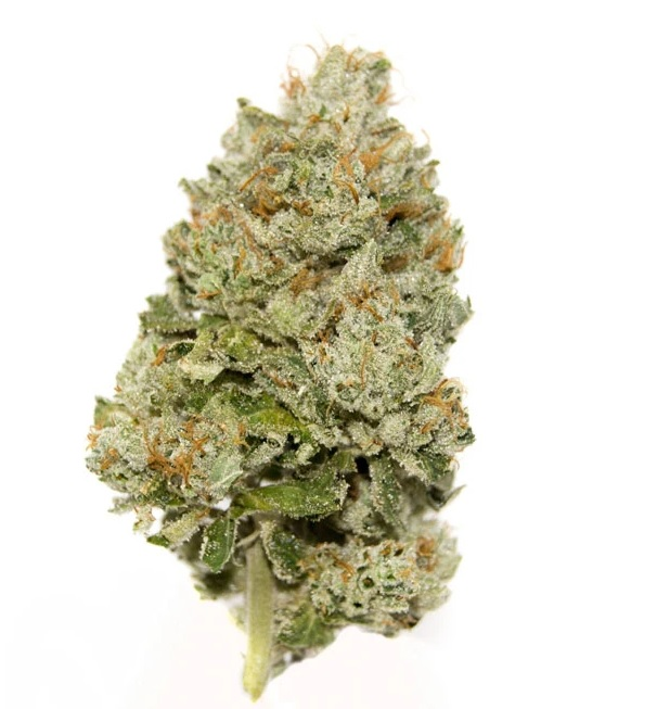 Girl Scout Cookies Delta-8 THC Flower Adelaide